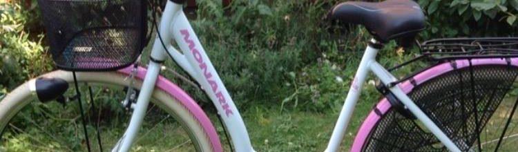 På jakt efter cykeltjuven